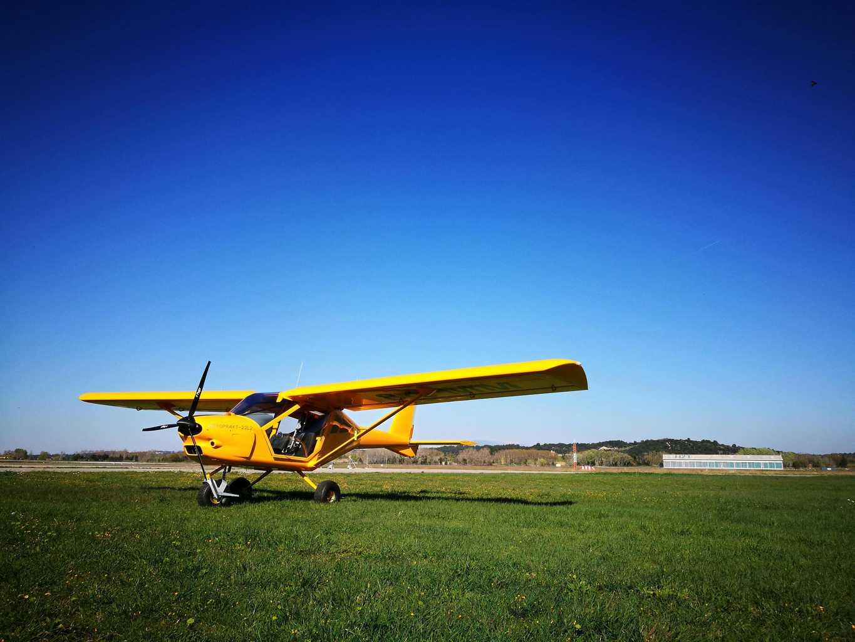 A22L2 yellow